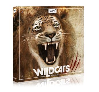 WILDCATS Released