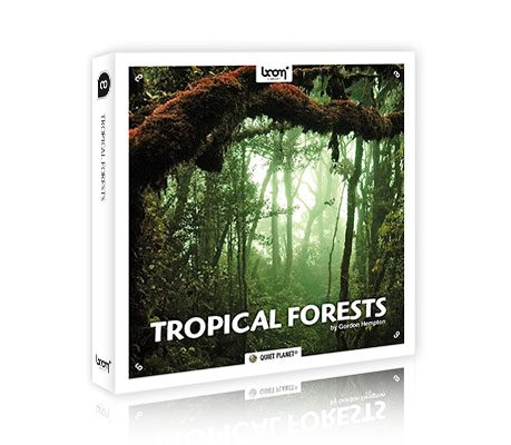[BEHIND THE SCENES] HOW TO RECORD TROPICAL FORESTS (by Gordon Hempton)