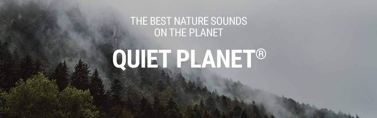 The Complete Quiet Planet Teaser Header Rectangle Nature Sounds