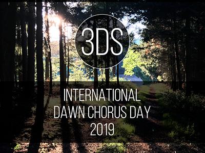 3DS International Dawn Chorus Day 2019 Free SFX